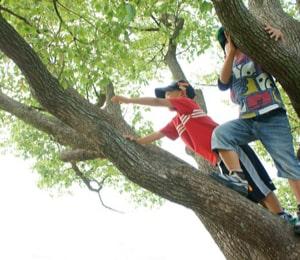 子どもの可能性を広げる4つの要素